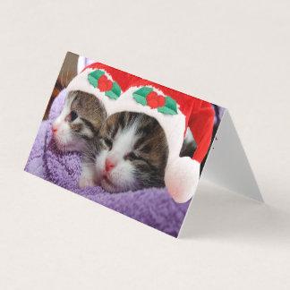 Dois gatinhos no cartão do Feliz Natal dos chapéus