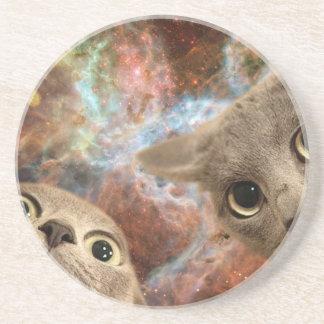 Dois gatos cinzentos no espaço antes de uma porta-copos de arenito