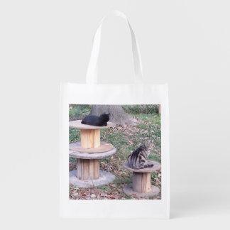 Dois gatos em carretéis de madeira sacola ecológica