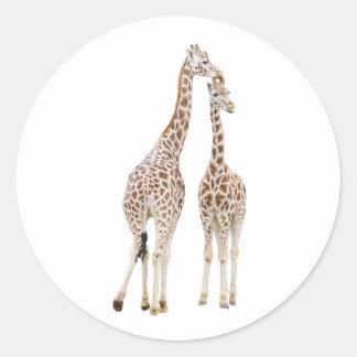 Dois girafas adesivo redondo