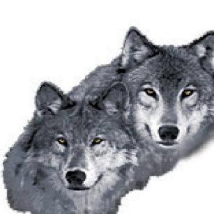 Chaveiros Lobos Bonitos Zazzlecombr
