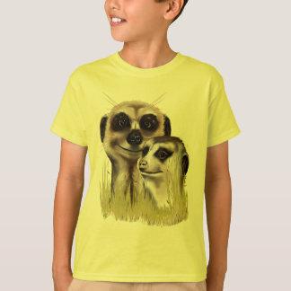 Dois Meerkats em camisas da grama