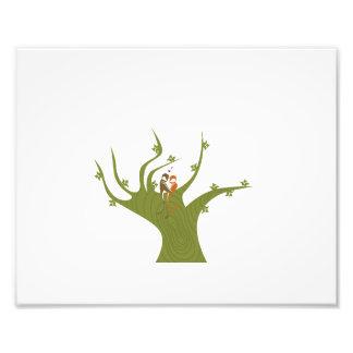 Dois pássaros no abstrato tree png da azeitona impressão fotográficas