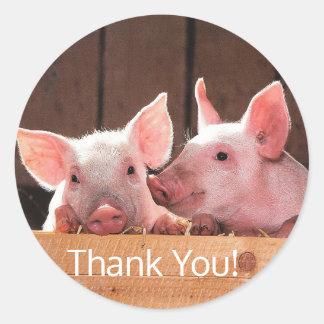 Dois porcos em um celeiro em etiquetas redondas