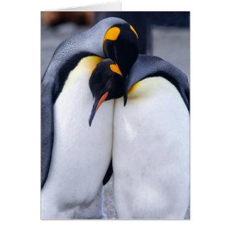 Dois rei pinguins - cartão de nota