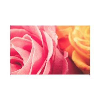 Dois rosas