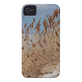 Domestique um vento selvagem II Capas Para iPhone 4 Case-Mate