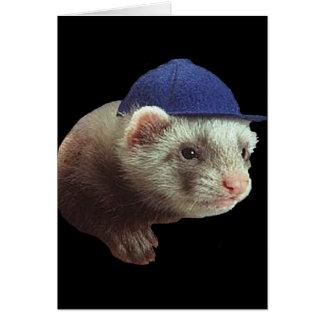 Doninha que veste o cartão do chapéu