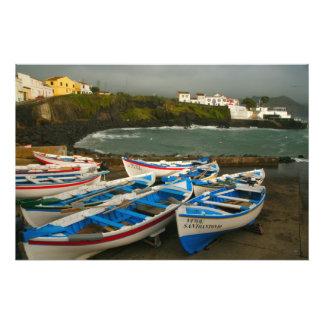 Dos Carneiros de Porto Impressão De Foto