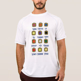 Doze (12) tribos de camiseta de Israel