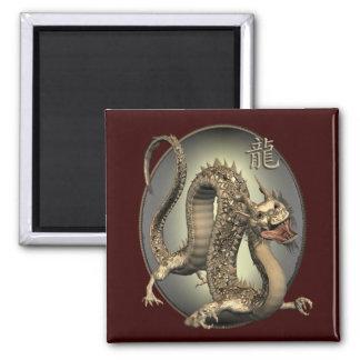 Dragão do chinês do vintage imas