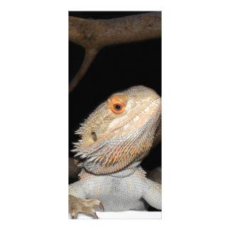 Dragão farpado 2 10.16 x 22.86cm panfleto