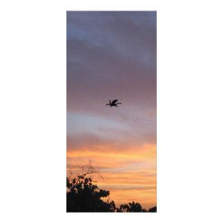 Dragão no céu 10.16 x 22.86cm panfleto