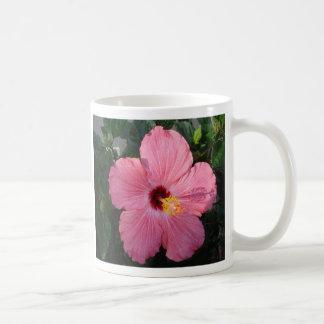 DSC00009_6, hibiscus, substantivo, cuses do pl. -  Caneca