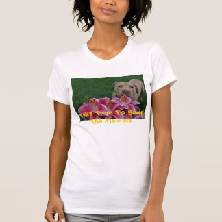 DSC_0699, tomam o tempo cheirar as flores T-shirts