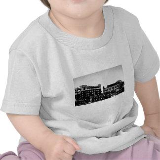 DSCN0065 B jpg Camiseta
