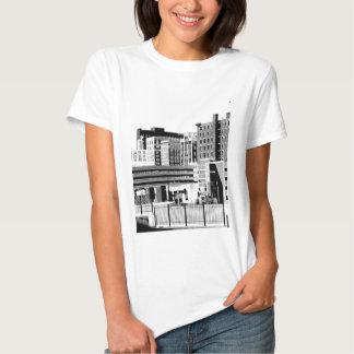 DSCN0084 B.jpg Camisetas