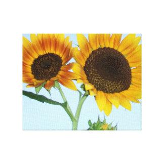 Duas flores artísticas impressionantes do girassol impressão de canvas envolvida