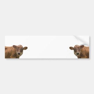Duas vacas adesivo para carro