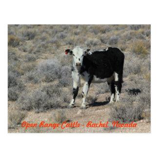 E cartão de Nevada do gado da estrada