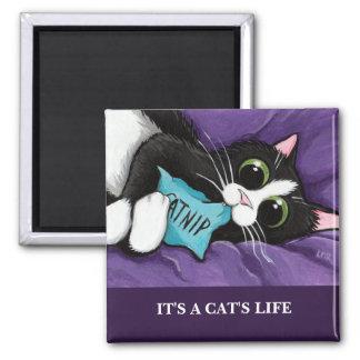 É ímã da arte do gato da vida   Personalizable de Ímã Quadrado