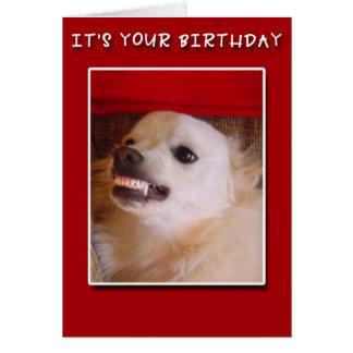 É seu aniversário! Sorrindo o cartão de
