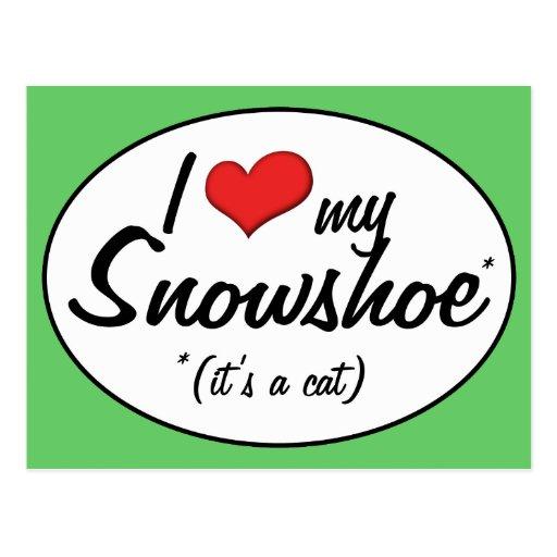 É um gato! Eu amo meu sapato de neve Cartoes Postais