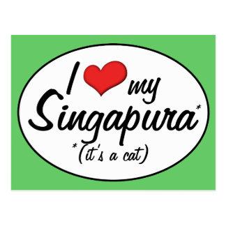 É um gato! Eu amo meu Singapura Cartao Postal