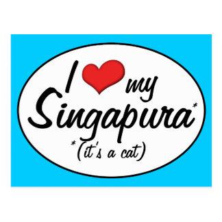 É um gato! Eu amo meu Singapura Cartão Postal