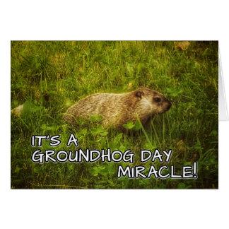 É um milagre do dia de groundhog! cartão