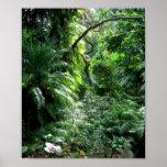 É uma selva para fora lá ..... posters