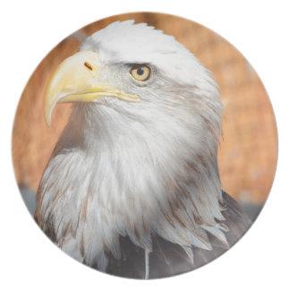 Eagle no deus que nós confiamos louça de jantar