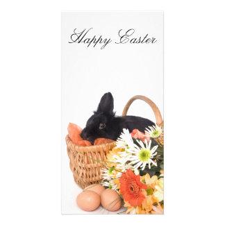 Easter Bunny Cartões Com Foto