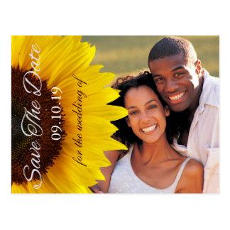 Economias amarelas do casamento do girassol a foto cartoes postais