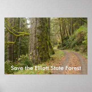 Economias da árvore da floresta primária da pôster