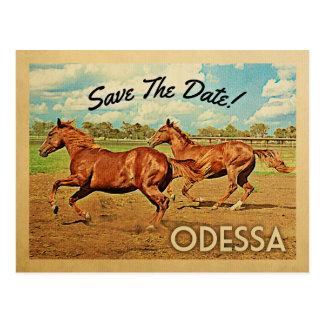 Economias de Odessa Texas os cavalos da data Cartão Postal