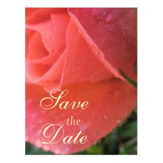 Economias do Rosebud do primavera a data Cartão Postal