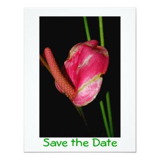 Economias tropicais da flor a data convite 10.79 x 13.97cm