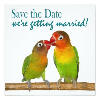 Economias tropicais dos pássaros bonitos do amor convite personalizado