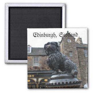 Edimburgo, o monumento do cão famoso, Scotland Ímã Quadrado