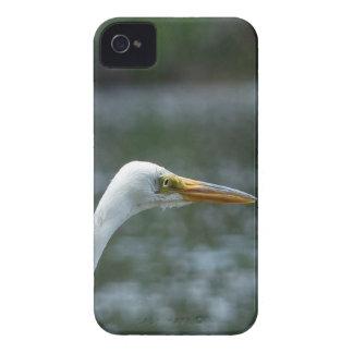 egret capa para iPhone 4 Case-Mate