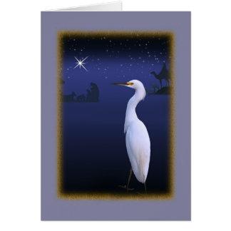 Egret nevado com o cartão de Natal da natividade