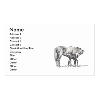 Égua e potro modelo cartões de visitas