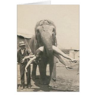elefante com a menina no cartão da boca