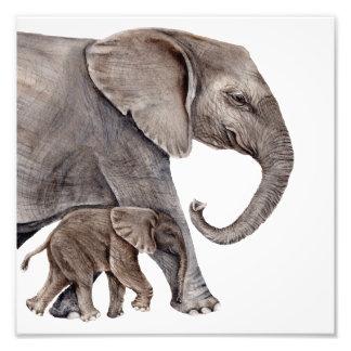 Elefante da mãe com impressão da arte da foto do
