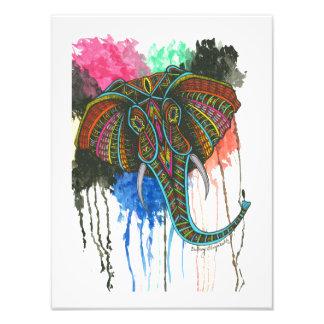 Elefante do arco-íris impressão de foto