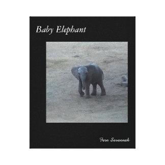 Elefante do bebê na lona da galeria pelo savana da impressão em tela
