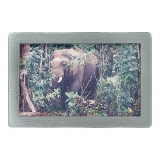Elefante em Tailândia