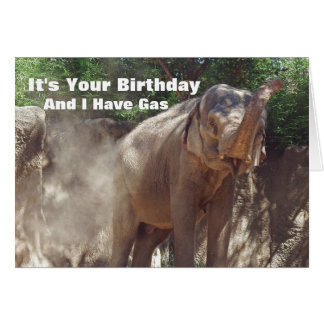 Elefante engraçado com o cartão de aniversário do