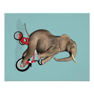 Elefante feliz no triciclo poster perfeito